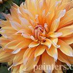Картина на заказ-цветы3