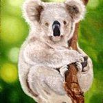 Картина-Милый коала,холст,масло,40х60,2004г._Олег М. Караваев