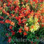Картина,Фото-Цветочная сказка,пейзаж в красном
