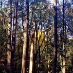 Фотография-Осенние пейзажи Олега М. Караваева,фотоальбом.