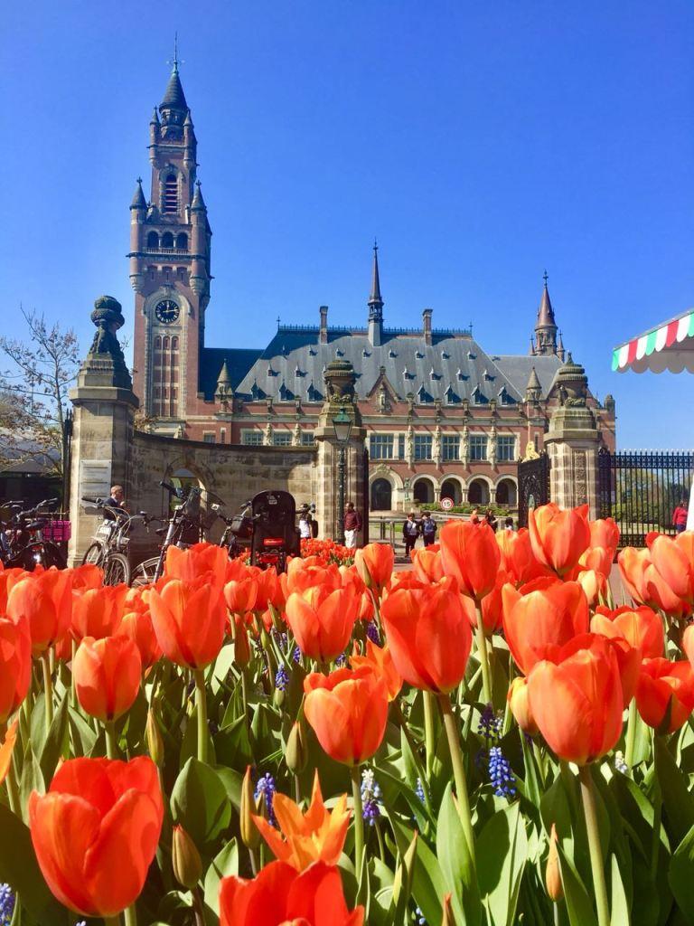 Фото-Гаага, Peace Palace