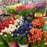 Цветы-Городской пейзаж-Амстердам10