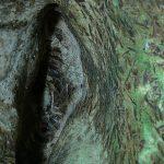 Пейзажи пещеры 3