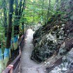 По дороге к пещере- Пленэр Портала в Каменце-Подольском