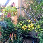 Мастерская Сезанна вид с входа в усадьбу