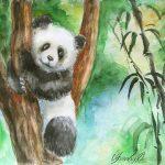 Панда-на-дереве-40Х30-бумага-акварель-2017-Орлова-Юлия