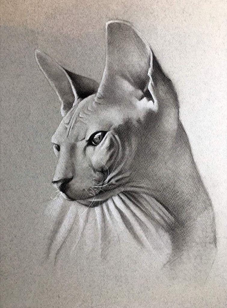 Взгляд, бумага, пастель - художник Сергей Мельников, заказать картину