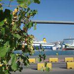 Пирейский порт сквозь виноград