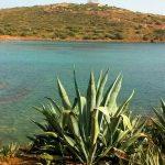Эгейское море с видом на храм Посейдона