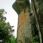 Сигирия,капюшое кобры-на страже скалы