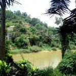 Пейзажи Шри Ланки