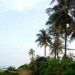 У океана индийского, заказать картину-пейзаж