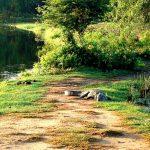 Крокодил-Национальный парк Яла-Сафари
