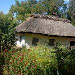 Украинское село - пейзажи 10