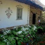 Украинское село - пейзажи8