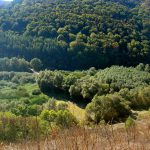 Красота природы Украины