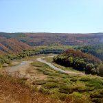 Красота природы Украины-долина цапель