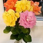 Букет дачных роз