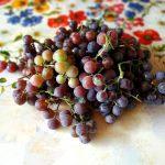 Виноградные краски, заказать картину