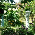 Сад цветущий и пахнущий