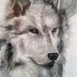 Волк, холст, акрил, 50×70, Анастасия Запалатская
