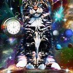 Космический Cat, комп.графика, 1066×1600 пикс., Алиса Адамайтис
